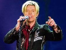 Schilderij David Bowie in Antwerps museum