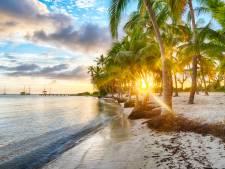 La Guadeloupe et la Martinique à partir de Charleroi, c'est bientôt possible