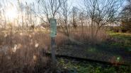 Vergif op wandelpad langs Molenbeek