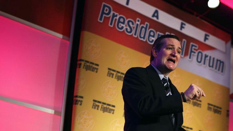 De Texaanse Senator Ted Cruz. Beeld afp