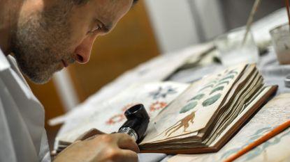 Code van meest mysterieuze manuscript ter wereld gekraakt?