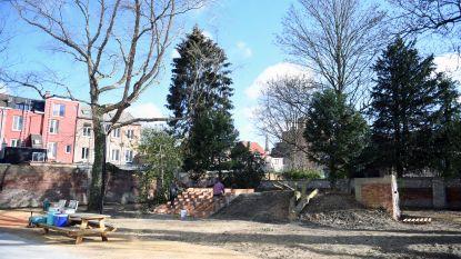 Te ontdekken: nieuw groen pareltje in Fonteinstraat