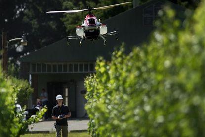 Geniaal: drones planten 100.000 bomen per dag