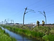 Opnieuw bermbrand door remmende trein Betuweroute
