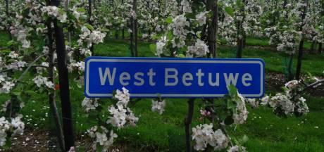Stemmen tellen: wat wordt het nieuwe logo van West Betuwe?