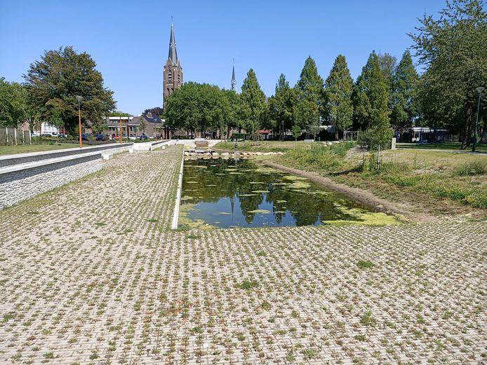 Ook het onkruid tiert welig in het vorig jaar aangelegde Van Greunsvenpark.