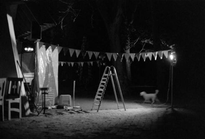 De winnende foto 'Clownachterblijfselen' van Shirley Welten.