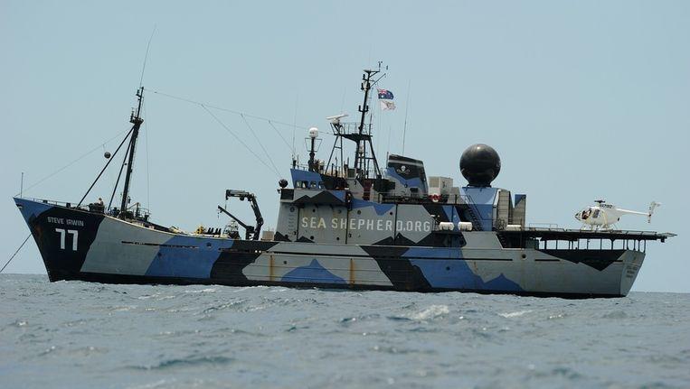 Het schip de Steve Irwin van Sea Shepherd. Beeld afp