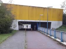 Camera's in strijd tegen autokrakers in Harderwijk