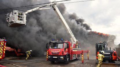 """Loods met waardevol materiaal van aannemer uitgebrand: """"Machteloos toezien hoe alles in vlammen opgaat"""""""