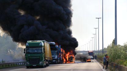 Zwarte dag op E17: twee doden, verschillende gewonden en grote ravage bij reeks ongevallen