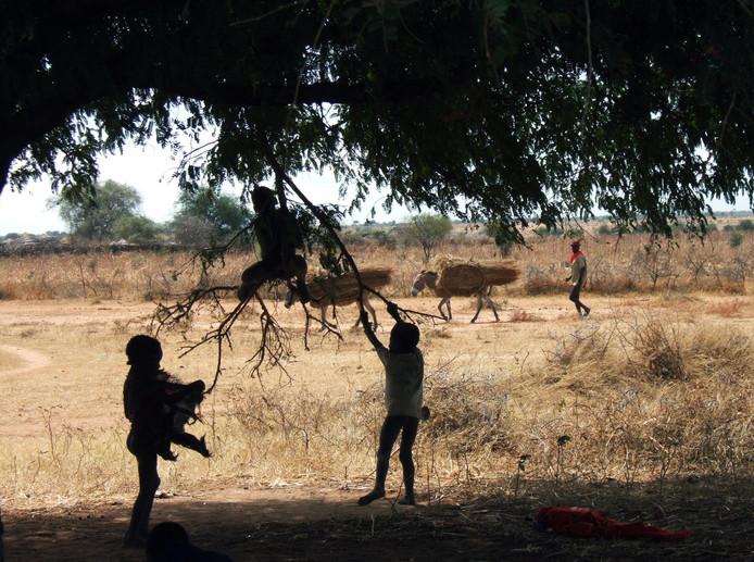Foto van de regio Karamoja in Oeganda waar het voedsel, waar mogelijk iets mis mee is, is uitgedeeld.
