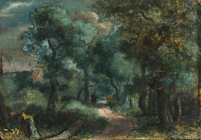Bosweg, canvas op paneel, 16.1 x 22.7 cm, ca. 1618-20 Beeld privé-collectie