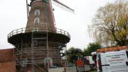 Restauratie Roomanmolen uit de startblokken, afbrokkelende gevel krijgt beschermingslaag