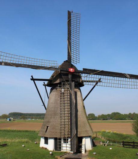 Werkendamse poldermolen wordt voor 3,5 ton gerestaureerd