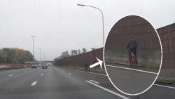 Levensgevaarlijke stunt op de snelweg: fietser rijdt langs de wagens op de E40 in Drongen