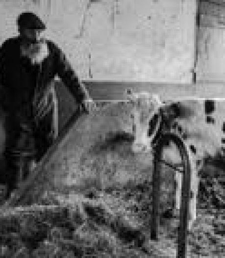 Documentaire over boer Peer Maliskamp valt in de prijzen