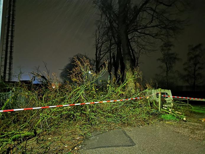 De brandweer vindt het te gevaarlijk om zes omgewaaide bomen op te ruimen. Daardoor is de Dijkhoevestraat in Spijk afgesloten.