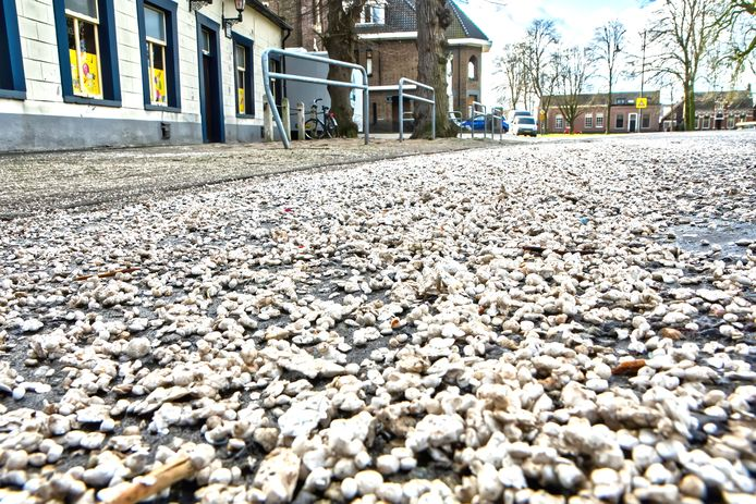 In de kern van Den Hout ligt na de optocht van maandagmiddag het wegdek bezaaid met piepschuim. Hier de situatie aan de Houtse Heuvel.