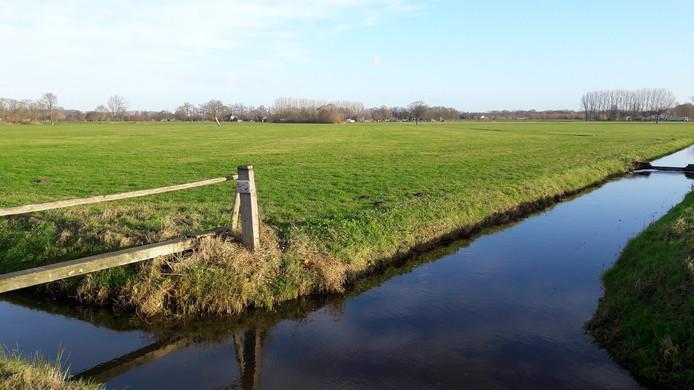Het terrein langs de Dijkgraaf in Bennekom war het zonnepark is gepland.