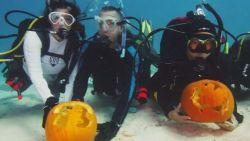 VIDEO. Duikers hollen pompoenen uit op diepte van 9 meter