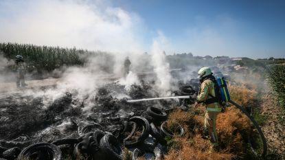 Honderden illegaal gedumpte autobanden vliegen in brand