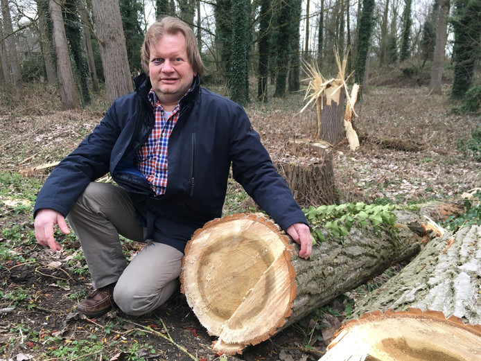 Ronald van Kemenade (52) bij de boom die hem bijna fataal werd