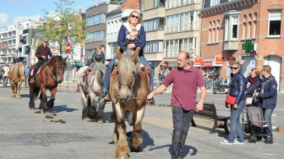 Belgische trekpaarden al negentig jaar te bewonderen op de Markt