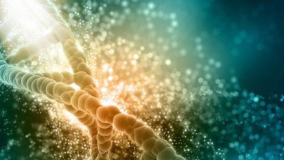 """Nieuwe studie bevestigt: twee derde van kankers gevolg van """"brute pech"""""""