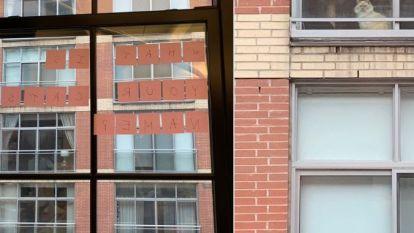 In de ban van een kat: kantoormeisjes raken geobsedeerd door kat achter raam aan de overkant
