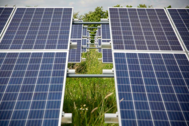 Het ecologisch zonnepark in het Drentse Ubbena, dat eind vorig jaar op een voormalige vuilstortplaats werd geopend. Beeld Herman Engbers