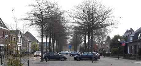 Wéér praat Heesch over bomen 't Dorp