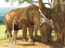 Docu over olifantenspecialist tijdens Wildlife Filmfestival in wereldpremière