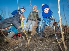 Wie helpt Hengelo aan een tiny forest?