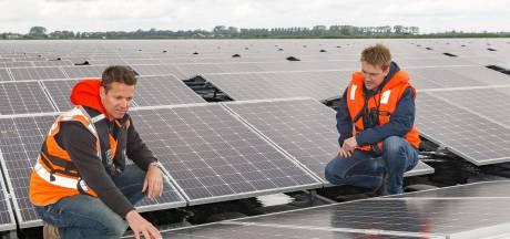 Zwolle is hoofdstad van drijvende zonneparken. Welke gevolgen heeft dat voor vissen, vogels en planten?