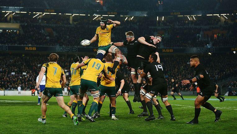 In augustus van dit jaar wonnen de Australiërs nog met 27-16 van Nieuw-Zeeland. Beeld getty