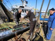 Geld voor onderzoek naar alternatief pulsvisserij