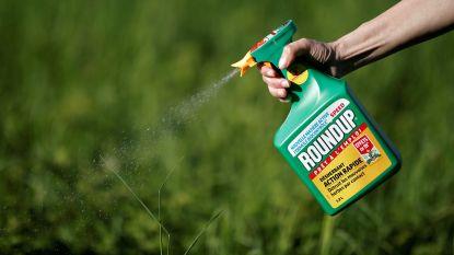 Opnieuw proces tegen Monsanto wegens Roundup