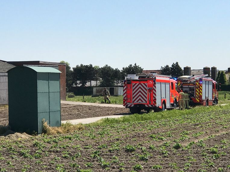 De brandweer had de grasbrand snel onder controle.