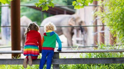 Hoera, vakantie! 6 leuke uitstapjes met kinderen