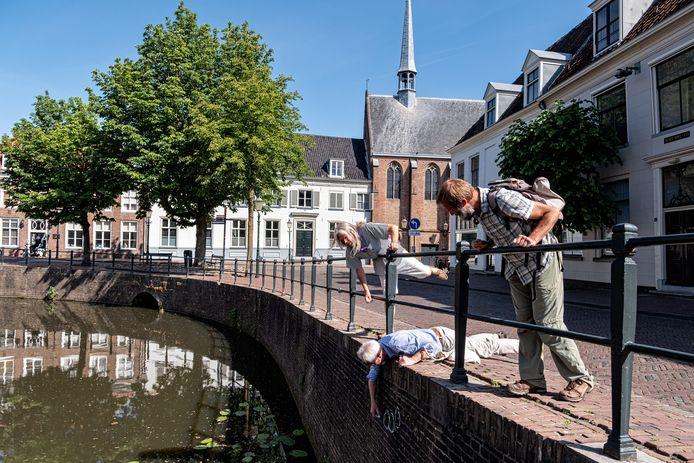 IVN-gids Gert Lodewijk arceert, liggend op zijn buik,  op de Nieuweweg muurvaren met krijt. Links Erik Eliveld, rechts Kees de Heer.