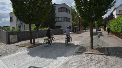 Gedaan met racen langs opritten: gemeente maakt Erpsestraat fietsvriendelijk door kasseien weg te halen