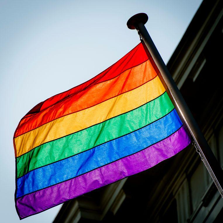 De landen roepen op tot het waarborgen van de rechten van seksuele minderheden. Beeld Hollandse Hoogte /  ANP