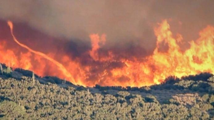 4000 hectares ravagés par un incendie en Californie.