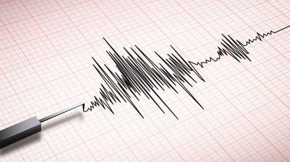 Japanse stad geteisterd door krachtige aardbeving