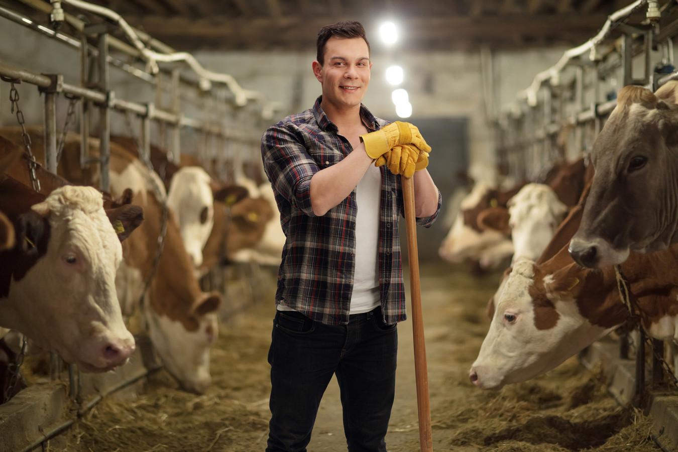 jonge boer