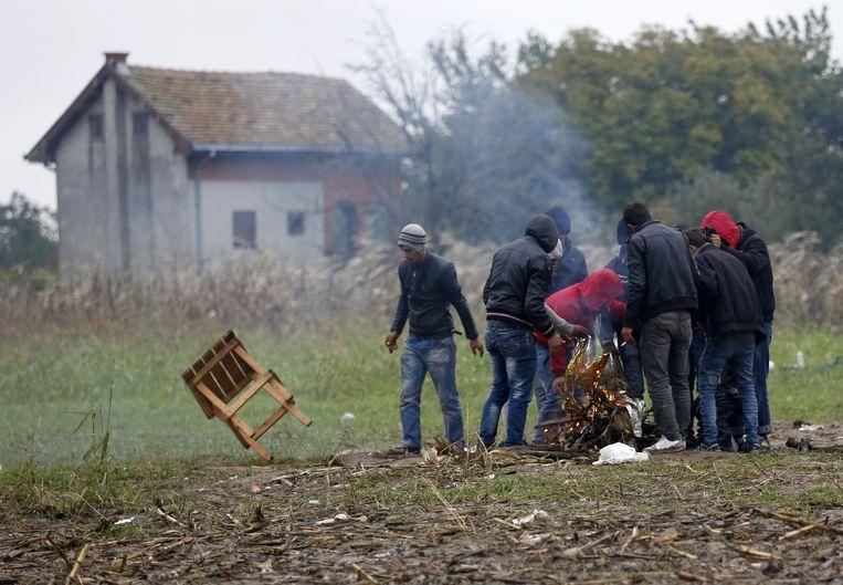 Migranten in het grensgebied tussen Servië en Kroatië stoken een vuur. Beeld ap
