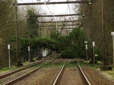 Door boom gestremd spoor tussen Arnhem en Zutphen is weer vrij