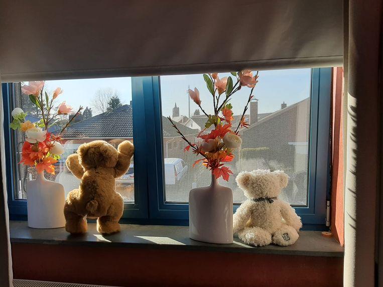 Overal duiken de beren op...