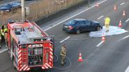 Ongeval veroorzaakt fileleed op E17 in Haasdonk